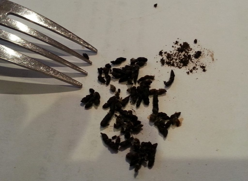 Bat poo, crumbles not sticky