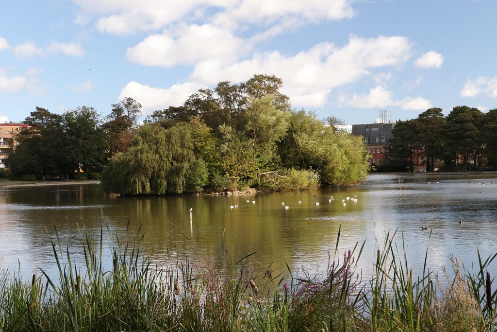 Leazers Park pond